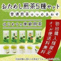 静岡茶 「おためし煎茶5種セット」普通級煎茶の詰め合わせ  メール便 送料無料 代引不可 緑茶